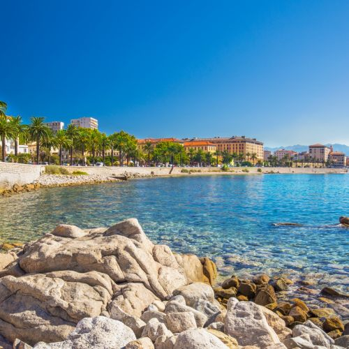 Une promenade bordée de palmiers et des eaux de la Méditerranée  à Ajaccio en Corse
