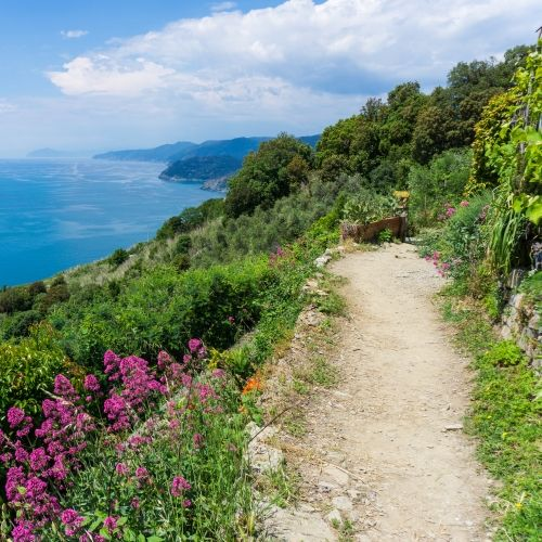 Un chemin de randonnée dans les Cinque Terre