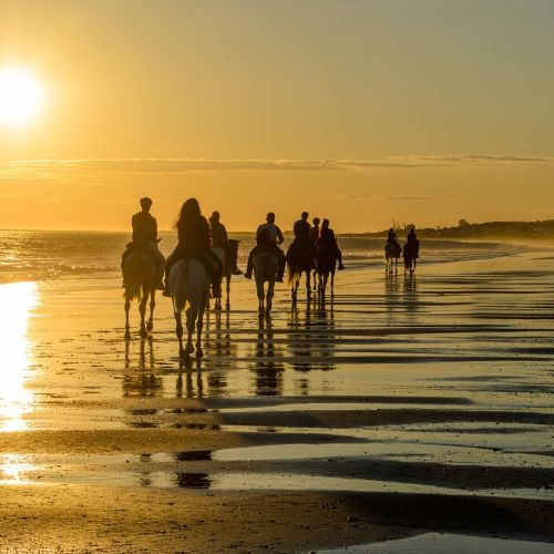 Des cavaliers sur la plage lors d'une balade à cheval au coucher de soleil