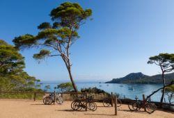 Des vélos de location contre un pin parasol sur l'île de Porquerolles, une activité à ne pas manquer durant votre location de yacht