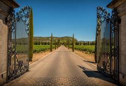 Un portail en fer forgé à l'entrée d'un domaine viticole en Provence
