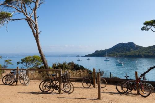 Des vélos sur l'île de Porquerolles dans le sud de la France